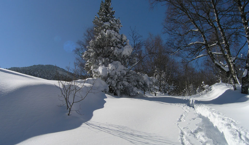 the trail to the Planès valley, winter view