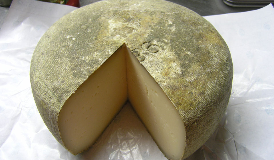 artisan cheese from Planès